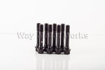 OEM Rod Bolt Kit R50 R52 R53
