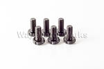 ARP Flywheel Bolts R55 R56 R57 R58 R59 R60 R61