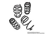 NM Engineering Alpha Lowering Springs F56