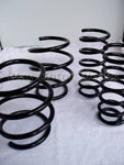 TSW MINI Performance Springs