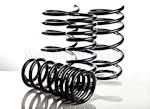 NM Engineering Countryman Lowering Springs